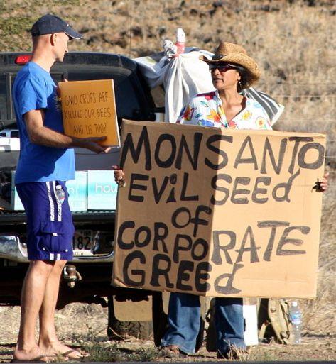553px-Occupy_Wall_Street_Maui_at_Monsanto_3