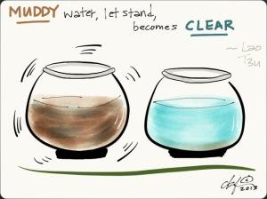 muddy-water