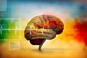 17048534-human-brain-in-abstract-medical-background