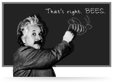 einstein and bees