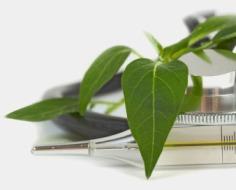 green-health-care-3