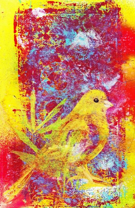 021515 Canary
