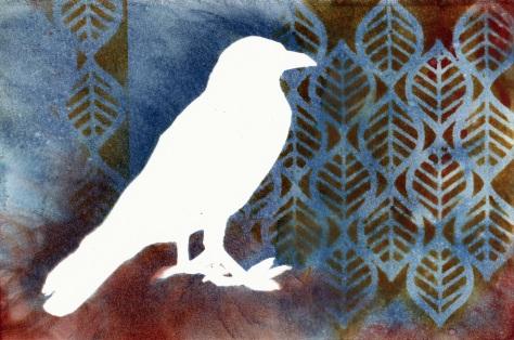 bird white 04142015